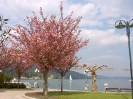 Klagenfurt-2006_18